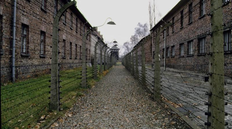 Many Americans Still Don't Know Basic Facts About The Holocaust, Survey Finds