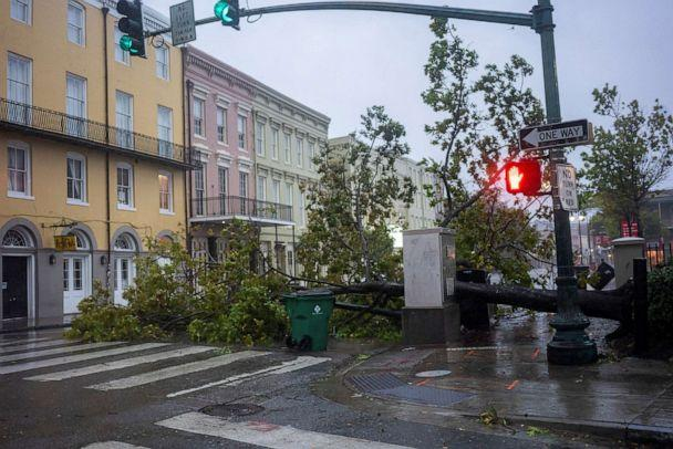 PHOTO: A tree lays across North Peters Street as Hurricane Zeta sweeps through New Orleans, Oct. 28, 2020. (Kathleen Flynn/Reuters)