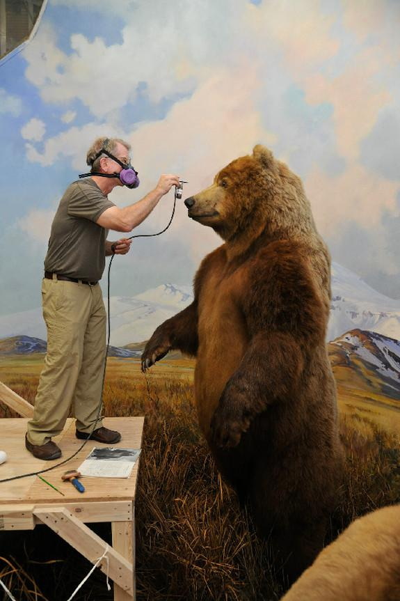 NYC Museum Celebrates Teddy Roosevelt's Conservation Work