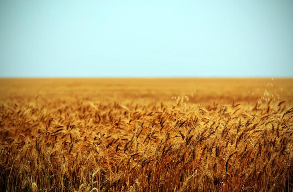 Continuing drought on the Prairies, with a glimpse of hope