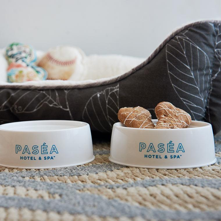 <p>An in-room bed, water bowls and treats will also be waiting for you. Photo: Supplied/Paséa Hotel & Spa </p>