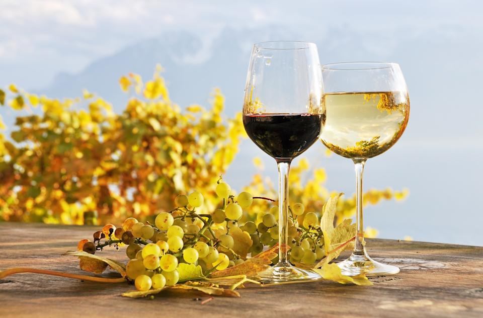 Two glasses of wine and bunch of grapes. Lavaux region, Switzerland