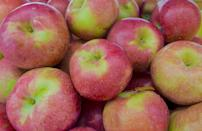 <p>A fall favorite, Macoun apples were discovered in New York in 1923. These apples are super sweet and very crisp with a mild flavor with notes of berry.</p>