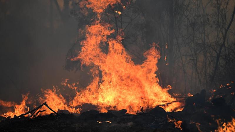 A catastrophic fire danger is in place for the Greater Sydney, Hunter and Illawarra Shoalhaven