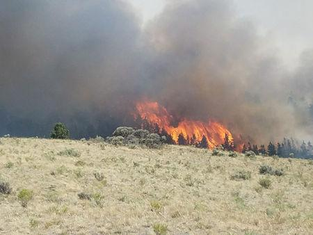 FILE PHOTO: Flames rise past a ridge during efforts to contain the Spring Creek Fire in Costilla County, Colorado, U.S. June 27, 2018.   Costilla County Sheriff's Office/Handout via REUTERS/File Photo