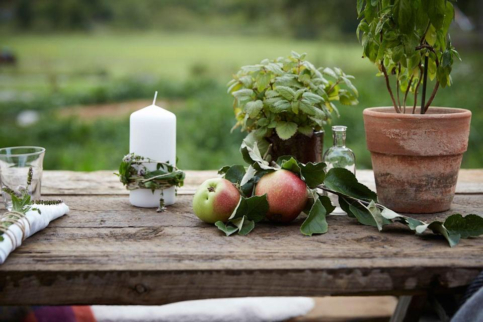 <p>For an outdoor dinner party, go for a mix of potted plants along with apples and candles wrapped in greenery.</p>