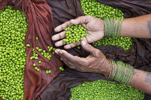 The need of the hour is to ensure that each and every citizen of the country has access to nutritious and adequate food. Image credit: By © Jorge Royan/http://www.royan.com.ar, CC BY-SA 3.0, https://commons.wikimedia.org/w/index.php?curid=19741949
