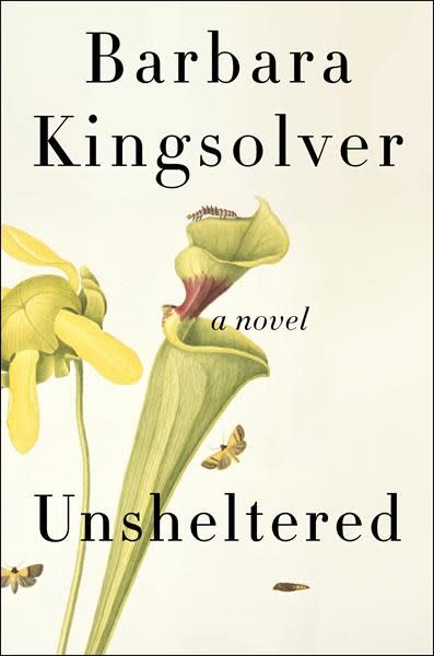 'Unsheltered' by Barbara Kingsolver blends fact and fiction