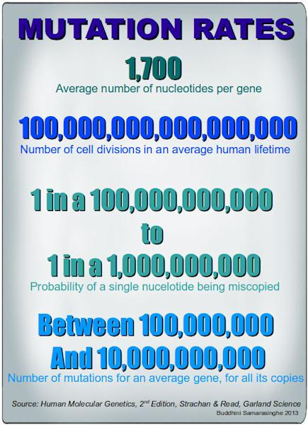 Hallmarks of Cancer 7: Genome Instability and Mutation