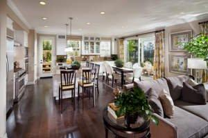 Buy Now at Botanika at Rosedale by Brookfield Homes and Move-In Before the Holidays