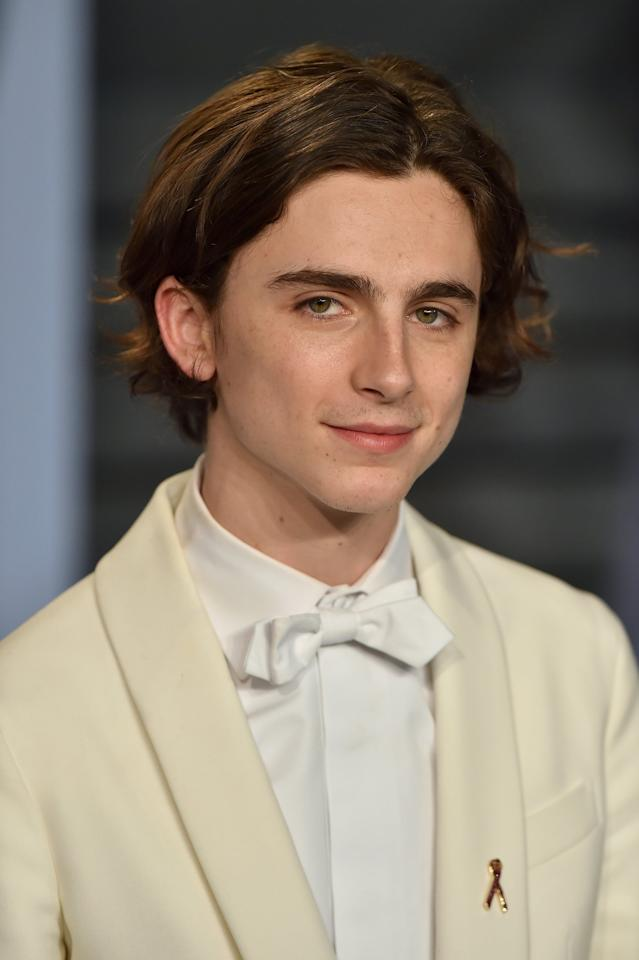 "<p>Speaking of <strong>Ladybird</strong>, Timothée Chalamet is set to play the family's next doore neighbor and Jo's first love, Theodore ""Laurie"" Laurence. As anyone who's read the book knows, his connection to the March sisters ends up differently than one might expect.</p>"