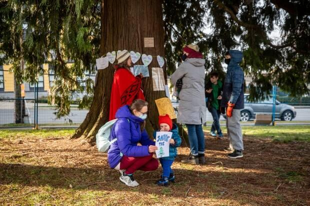 Residents of the City of North Vancouver rallied around the cedar tree in March. Over 23,000 people signed a petition to save the tree.