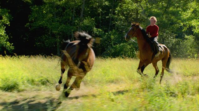 Out Stealing Horses' Tops Norway's 2019 Amanda Awards