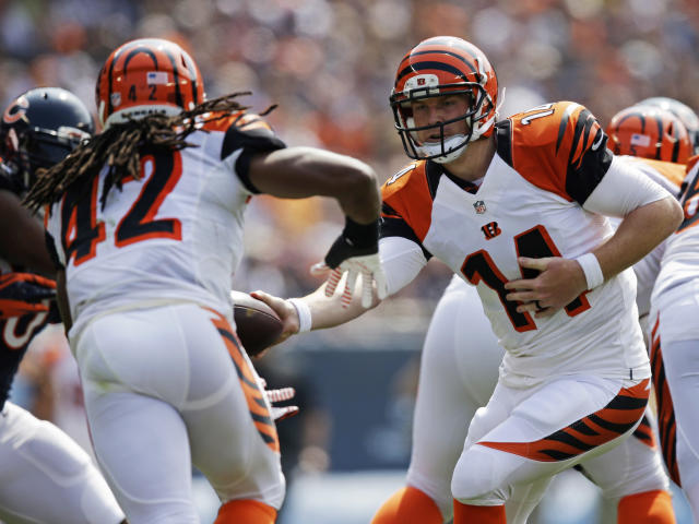 Cincinnati Bengals quarterback Andy Dalton (14) hands off the ball to running back BenJarvus Green-Ellis (42) during the first half of an NFL football game against the Chicago Bears, Sunday, Sept. 8, 2013, in Chicago. (AP Photo/Nam Y. Huh)