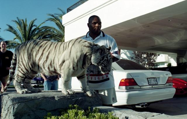 """<a class=""""link rapid-noclick-resp"""" href=""""/nfl/players/30300/"""" data-ylk=""""slk:Mike Tyson"""">Mike Tyson</a> poses with his white tiger during an interview at his home in the 1990s. (Getty Images)"""