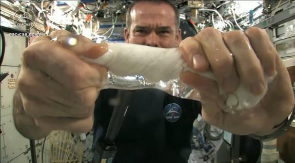 "Canadian astronaut Chris Hadfield shows just what happens to a wet washcloth in space when you wring it out without the help of gravity. The result: a ""tube"" of water. Hadfield demonstrated the phenomenon as part of a student experiment on Apri"