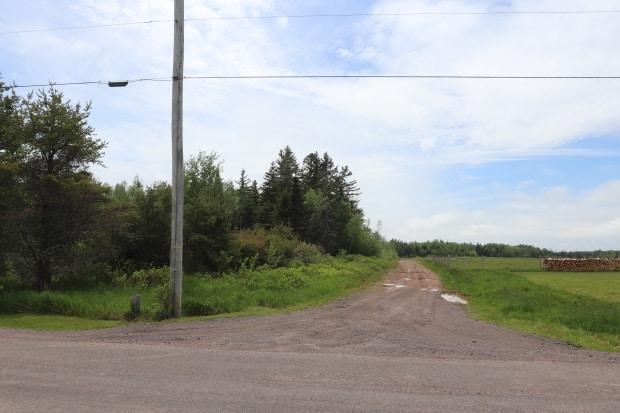 RCMP say human remains were found Thursday near an abandoned mobile home off Quarry Road in Coburg. (Shane Magee/CBC - image credit)