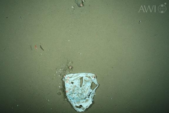 Photo of plastic waste, taken by the Ocean Floor Observation System (OFOS) in the HAUSGARTEN area in July 2012.