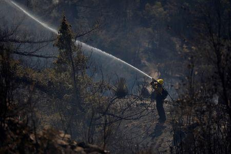 A firefighter sprays water to put out hot spots during the Wilson Fire near Mount Wilson in the Angeles National Forest in Los Angeles