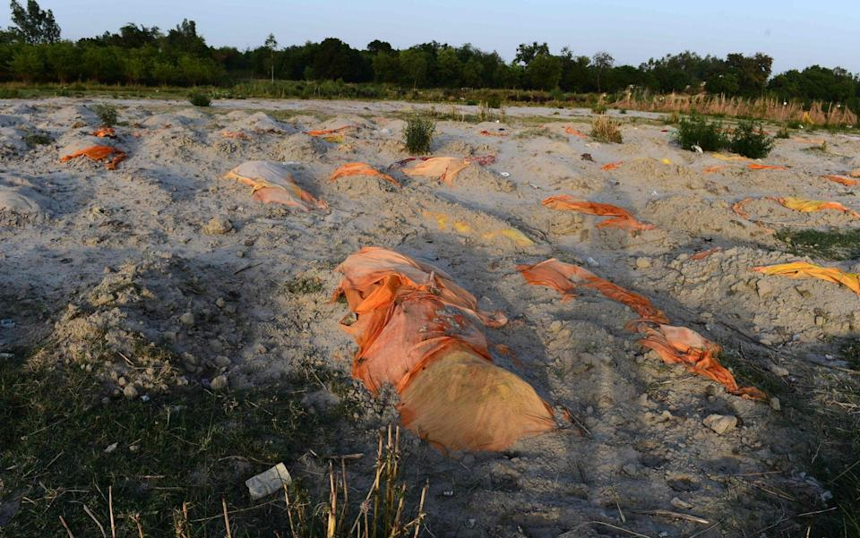 Bodies of suspected coronavirus victims are seen partially buried in the sand near a cremation ground on the banks of the Ganges River in Rautapur Ganga Ghat, in Unnao - SANJAY KANOJIA/AFP