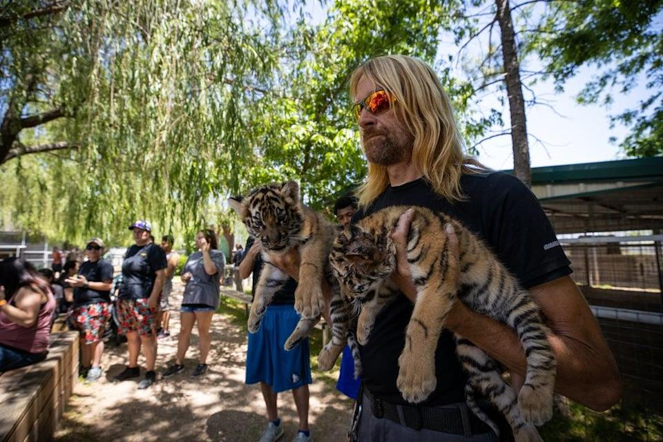 He rocketed to fame on the Netflix show Tiger King: Murder, Mayhem and Madness alongside Joe Exotic (James Breeden for DailyMail.com)