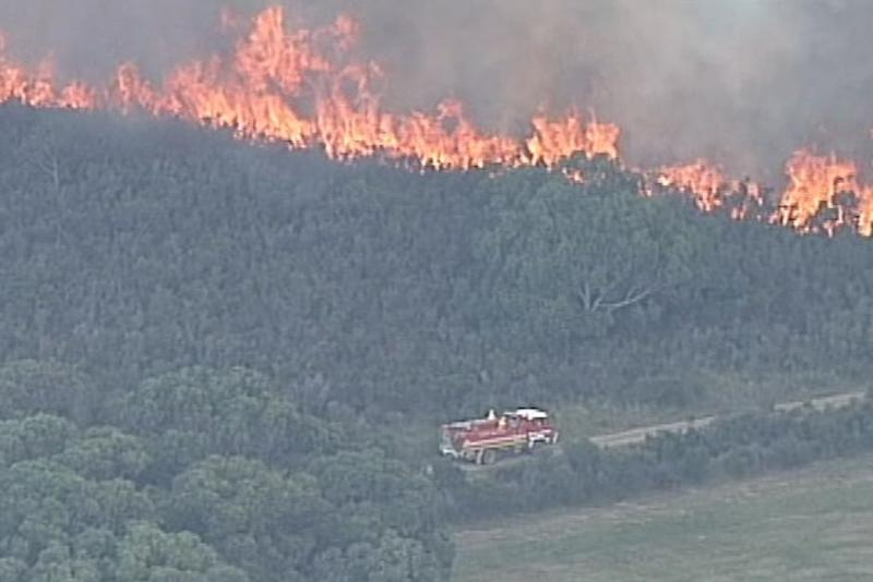 A fire burning on French Island overnight. Source: ABC News