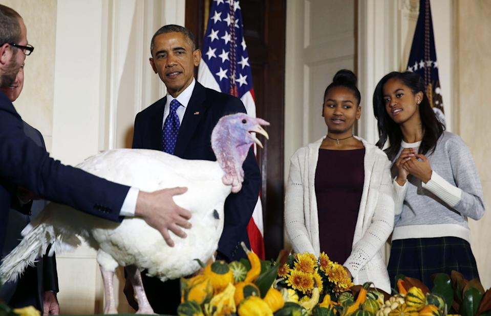 President Barack Obama is joined by his daughters, Sasha and Malia (R), as they all participate in the annual turkey pardoning ceremony marking the 67th presentation of the National Thanksgiving Turkey while in the White House in Washington, Nov. 26, 2014. (Photo: Larry Downing/Reuters)