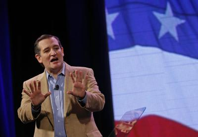 U.S. Senator Ted Cruz (R-TX) speaks at the Freedom Summit in Des Moines, Iowa, January 24, 2015. (REUTERS/Jim Young)