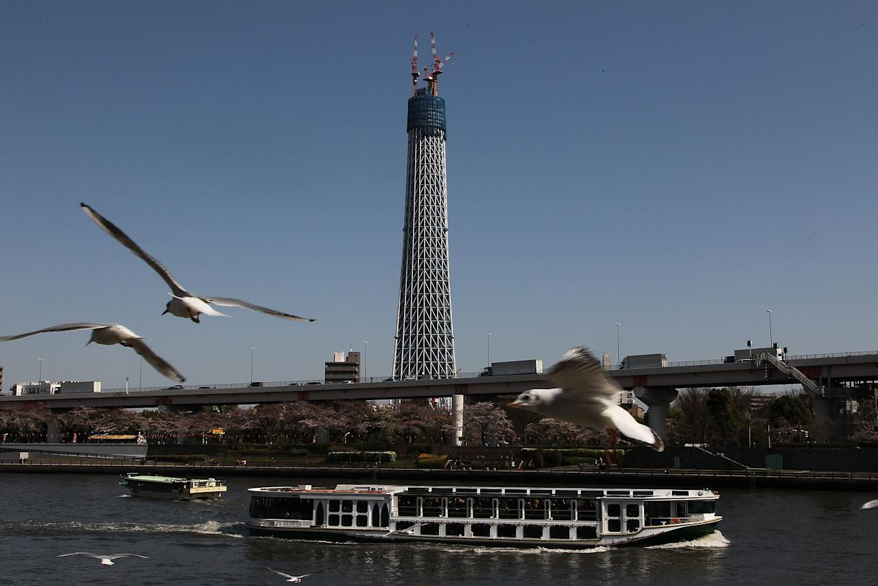 TOKYO - MARCH 30:  The Tokyo Sky Tree is pictured as it reaches a height of 338m during construction on March 30, 2010 in Tokyo, Japan. Surpassing the current tallest building in Japan, the 333m tall Tokyo Tower, the Tokyo Sky Tree will be the tallest artificial structure in the world at a height of 634m on completion in spring 2010.  (Photo by Koichi Kamoshida/Getty Images)
