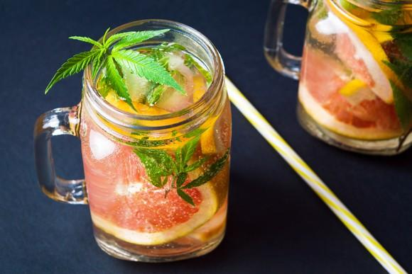Two glasses of grapefruit beverage with marijuana leaves in them