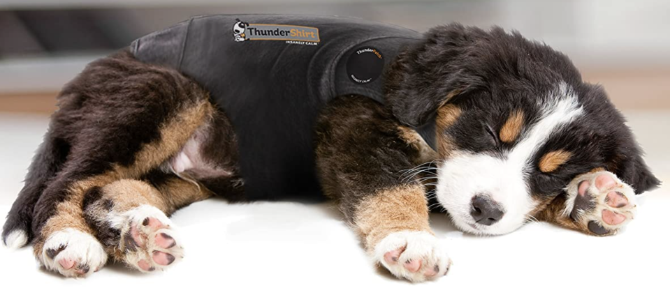 You and your pup can rest easy. (Photo: Amazon)