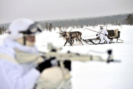 Russian servicemen of Northern Fleet's Arctic mechanised infantry brigade participate in military drill on riding reindeer and dog sleds near settlement of Lovozero outside Murmansk