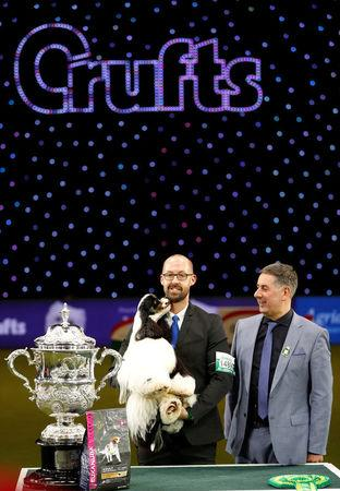 American Cocker Spaniel Miami poses with its handler Jason Lynn and judge Jeff Horswell (R) after being awarded best in show during the final day of the Crufts Dog Show in Birmingham, Britain March 12, 2017. REUTERS/Darren Staples