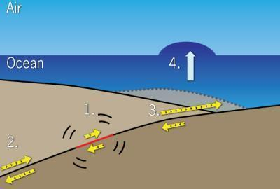 Fault motion sequence. 1. Rupture of the fault plane begins at the epicenter. 2. Rupture travels westward. 3. The upward sloping east side of the fault plane begins to rupture, forcing up the seafloor. 4. The water above the seafloor is pushed