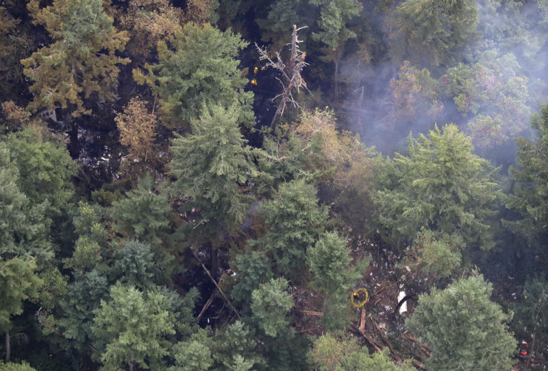 The site on Ketron Island in Washington state where an Horizon Air turboprop plane crashed after it was stolen from Sea-Tac International Airport is seen from the air, Saturday, Aug. 11, 2018, near Steilacoom, Wash. Investigators were working to find out how an airline employee stole the plane Friday and crashed it after being chased by military jets that were quickly scrambled to intercept the aircraft. (AP Photo/Ted S. Warren)