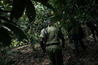 Barbed wire and armed guards patrolling the grounds are a reminder that the front line is not far away (AFP/ALEXIS HUGUET)