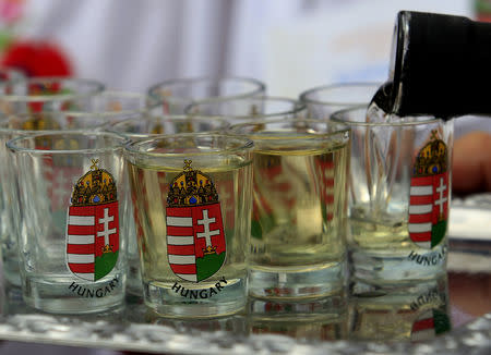 A man fills up glasses with 'palinka', a Hungarian fruit brandy, during the International Wheat Harvest Festival in Opalyi, eastern Hungary July 13, 2013. REUTERS/Laszlo Balogh