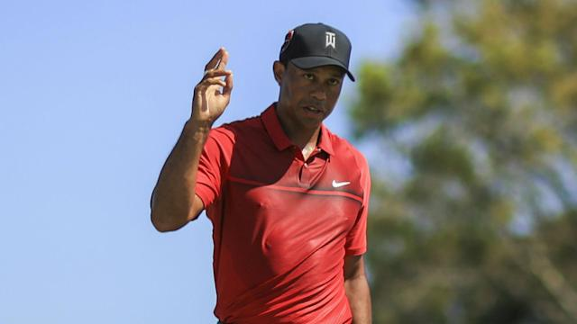 A largely impressive front nine for Tiger Woods in round four of the Honda Classic featured three birdies and one deflection off a goose.