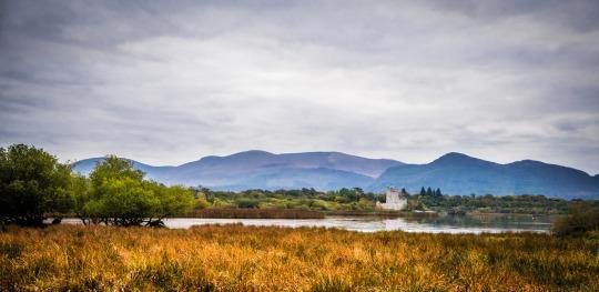 <p>Sights you'll see in the park include 15th century Ross Castle (which you can boat to). And if you're lucky, you'll also see some Irish red deer — the park has the country's only remaining native wild herd. <i>(Photo: Insight Vacations)</i></p>
