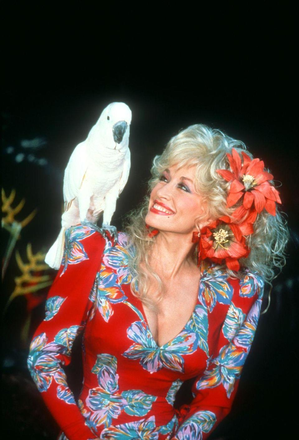 "<p>Full of surprises, Dolly was joined by a parrot on her show <em>Dolly! </em>Though it really shouldn't be all that shocking considering the singer's <a href=""https://www.peta.org/features/loretta-emmylou-dolly/"" rel=""nofollow noopener"" target=""_blank"" data-ylk=""slk:love of animals"" class=""link rapid-noclick-resp"">love of animals</a>.</p>"