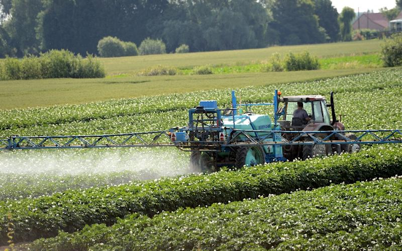 """IARC said that three pesticides, including a commonly-used weedkiller, were """"probably"""" carcinogenic and two others, which have already been outlawed or restricted, were """"possibly"""" so (AFP Photo/Denis Charlet)"""