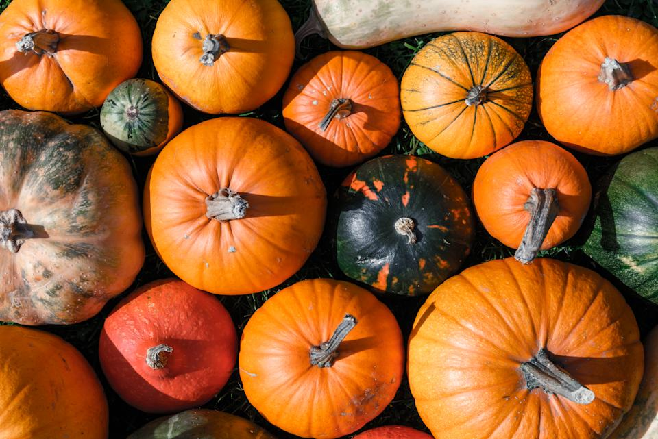 Pumpkin waste in the UK is set to reach a record high this year. [Photo: Getty]