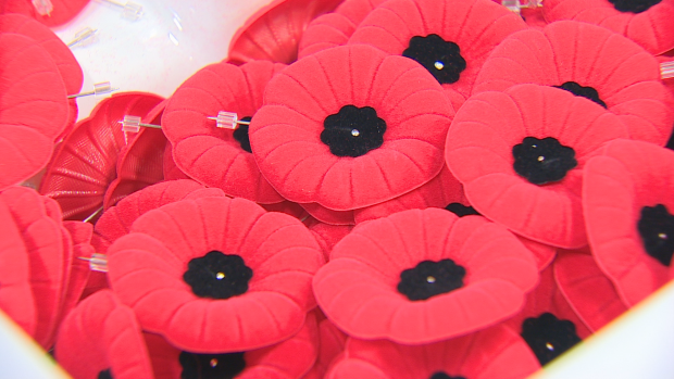 Today marks the start of this year's poppy appeal