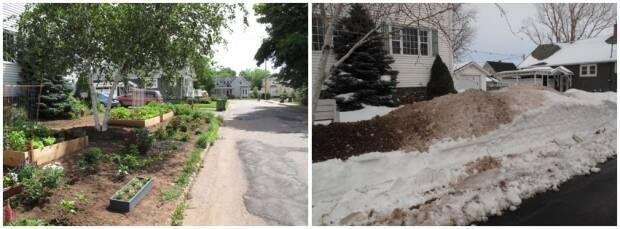 Kim Lyon says she was upset to see a pile of road scrapings, right, made up of snow, salt and asphalt piled on the organic garden, left, she grew in the summer. (Kim Lyon - image credit)