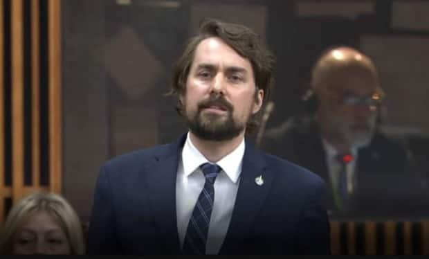 Bloc Québécois MP Sébastien Lemire rises in the House of Commons on Wednesday to apologize for taking a screenshot of fellow MP Will Amos, who was glimpsed naked on a Zoom call during House of Commons proceedings last week. (House of Commons - image credit)