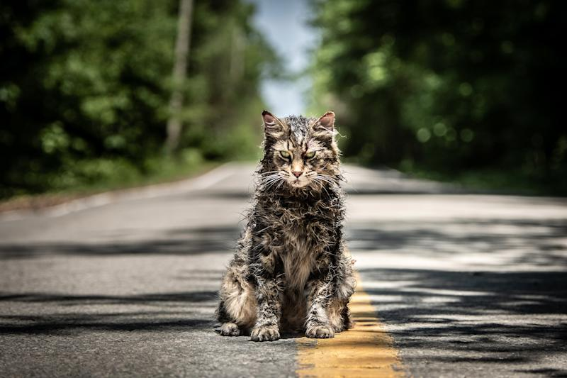 The Cat Who Starred In Pet Sematary Has Died