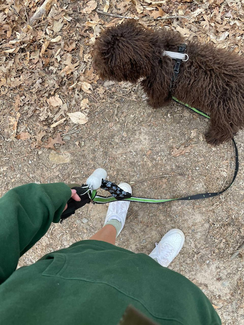 """<h2><h2>Kurgo Quantum 6-in-1 Dog Leash</h2></h2><br>""""I'm in the middle of leash training Lucca which means walks can be very complicated. Sometimes I want him standing close to my right side, and other times he's free to wander ahead of me. Kurgo's Quantum leash lets you utilize six different set ups and it even uses a reliable carabiner. Plus, it comes in a few fun colors"""" — <em>Morgan Baila, Supervising Editor</em><br><br><strong>chewy, kurgo</strong> Quantum 6-in-1 Dog Leash, $, available at <a href=""""https://go.skimresources.com/?id=30283X879131&url=https%3A%2F%2Fwww.kurgo.com%2Fleashes-collars%2Fquantum-6-in-1-dog-leash%2F"""" rel=""""nofollow noopener"""" target=""""_blank"""" data-ylk=""""slk:Chewy, kurgo"""" class=""""link rapid-noclick-resp"""">Chewy, kurgo</a>"""