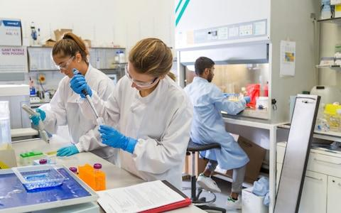 Scientists prepare the magnetic nanoparticles in the lab - Credit: Harry Parvin