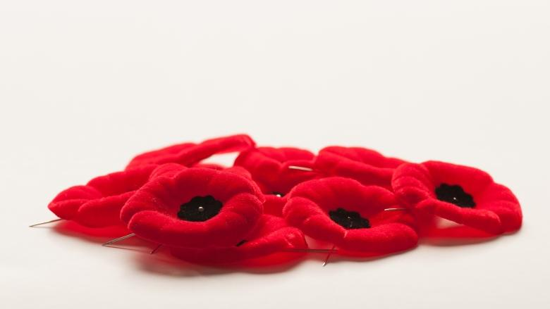 Pulse of Canada: Should Remembrance Day be a statutory holiday across Canada?