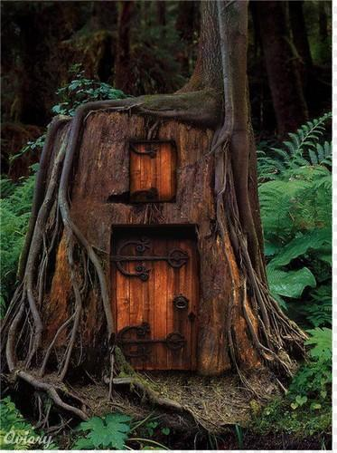"""<div class=""""caption-credit""""> Photo by: Visualize Us</div><div class=""""caption-title"""">In the Forest</div>Sleep the night away in this Humboldt treehouse. <br> <b><i><a rel=""""nofollow"""" href=""""http://blogs.babble.com/family-style/2011/06/21/the-20-most-amazing-tree-houses-in-the-world/"""">Related: The 20 most amazing tree houses in the world</a><b><i><br></i></b></i></b>"""